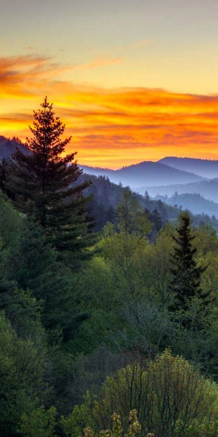 Great Smoky Mountains National Park on the Tennessee/North Carolina border. Photo Credit: Dave Allen on Flickr