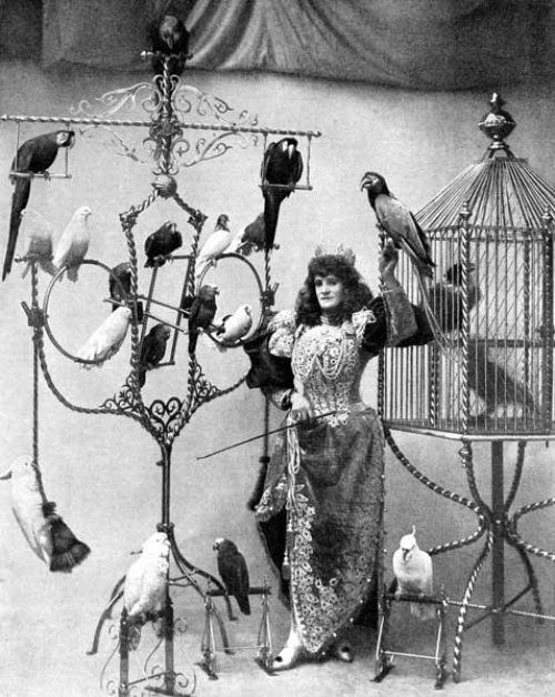 Madame Marzella with her pets, at the Tivoli, 1896.