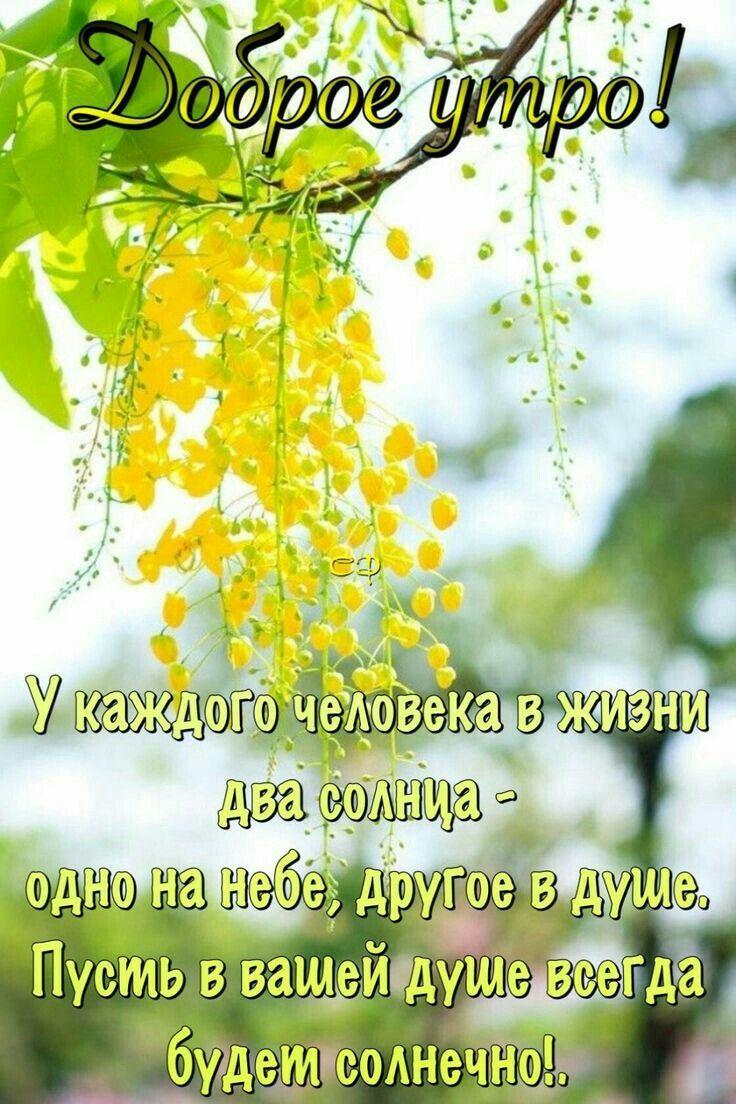 Pin By Natalya Kondrateva On Dobroe Utro In 2021 Good Morning Photos Good Morning Greetings Good Morning