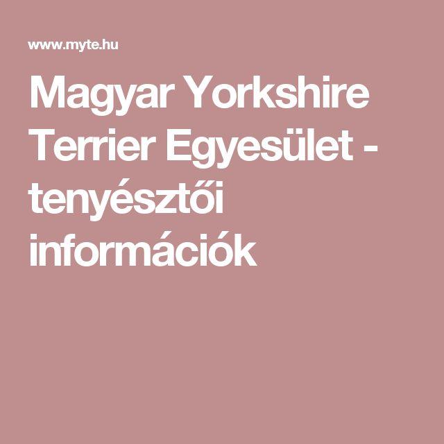 Magyar Yorkshire Terrier Egyesület - tenyésztői információk