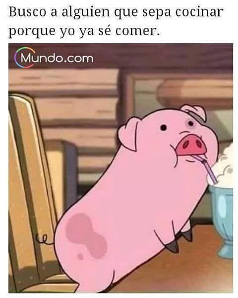 Buscando el amor  #love #lovely #food #amorpuro #amorporlacomida #comida #memes #memesenespañol #gracioso #cocinero #pig #divertido #chiste #mundo #mundopuntocom