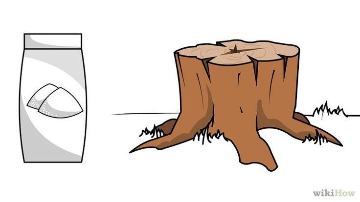 4 manières de détruire une souche d'arbre - wikiHow