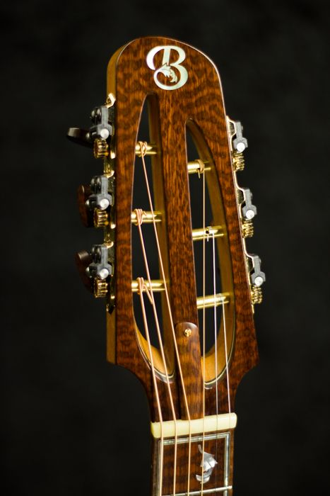 Snakewood Headstock veneer - Tom Bills Genesis G2s Acoustic Guitar