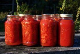 domácí rajčatový protlak | recept