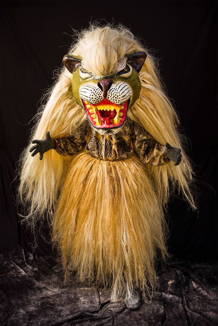 Picture of a person dressed as a lion