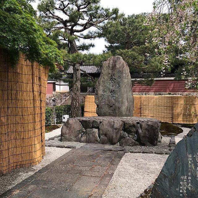 Нулевая верста культуры японского зеленого чая - Чайный камень в первом дзенском храме Старой столицы монастыре Кэнниндзи. Отсюда дзенский патриарх Эйсай распространял культуру зеленого чая по всей Японии. Небольшая чайная плантация позади памятника уже закрыта специальным навесом для защиты от прямого солнца чтобы сохранить нежный и изысканный вкус церемониального гёкуро до первого сбора на 88 день после первой луны. Ценители чая по всей Японии уже в предвкушении майского урожая молодого…