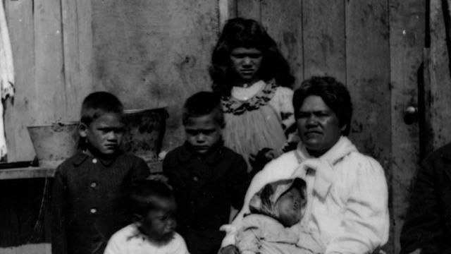 No Apology Needed. A film that examines the loss of land and mana of the Maori tribes of Taranaki in the 1860s and whether the aspirations o...