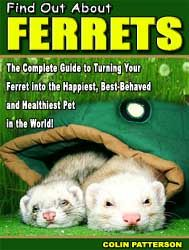 How to Double Your Ferret's Lifespan...  End All Biting, Stinking, and Pooping Problems... and Make Your Ferret the Happiest Pet in the World! and an honored member of the family.""