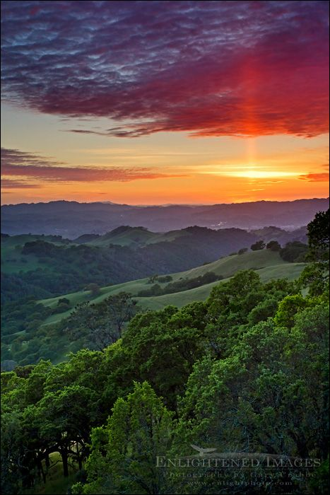 picture: Sun pillar at sunset over oak trees and green hills in Spring, Mount Diablo State Park, Contra Costa County, California