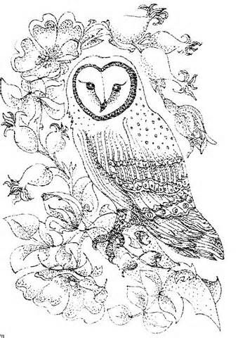 Owls Difficult Colouring Pages