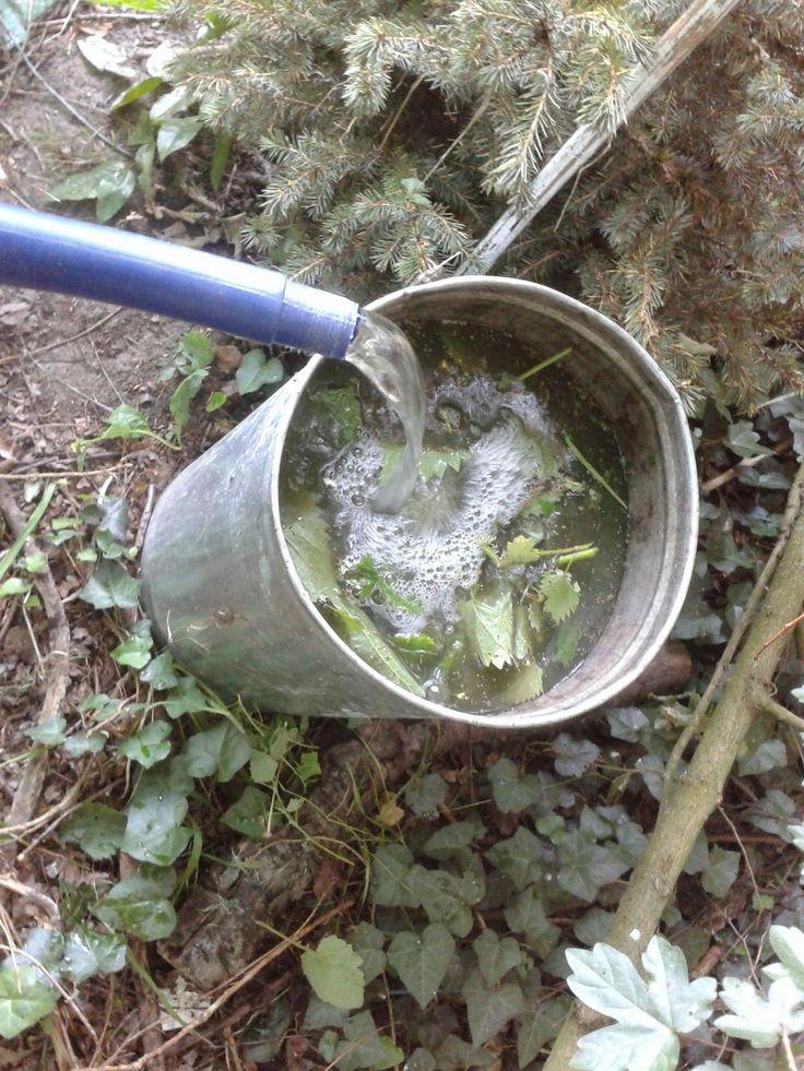 Gier-emmer starten met een paar gieters regenwater, dan kruiden erin uit het wild. Brandnetel, smeerwortel, stinkende gouwe, weegbree. Enkel de groene delen, niet de wortelkluit. Aanvullen tot bovenaan met water en een week of twee wachten tot het gaat  schuimen, dan kun je het verdund over je tuin gieten. Ik verdun het meestel 1 op 10 als voeding en  1 op 5 als middel tegen bladluis.