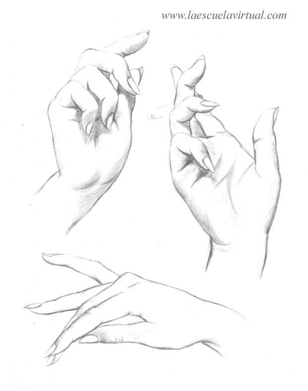 Como Dibujar Las Manos Pasrte 2 Tutorial Gratis Curso Online How To Draw Hands Drawing Draw Dibujo Lapiz Ded Manos Dibujo Como Dibujar Manos Manos Para Dibujar
