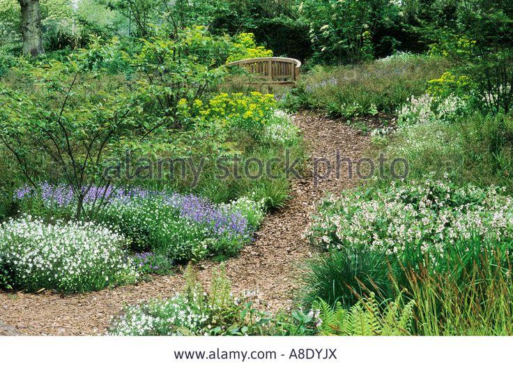 Woodland garden bark wood chip path symphytum pulmonaria wooden bench Stock Photo
