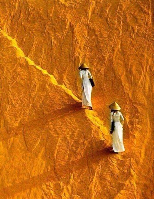 Orange                                                       …