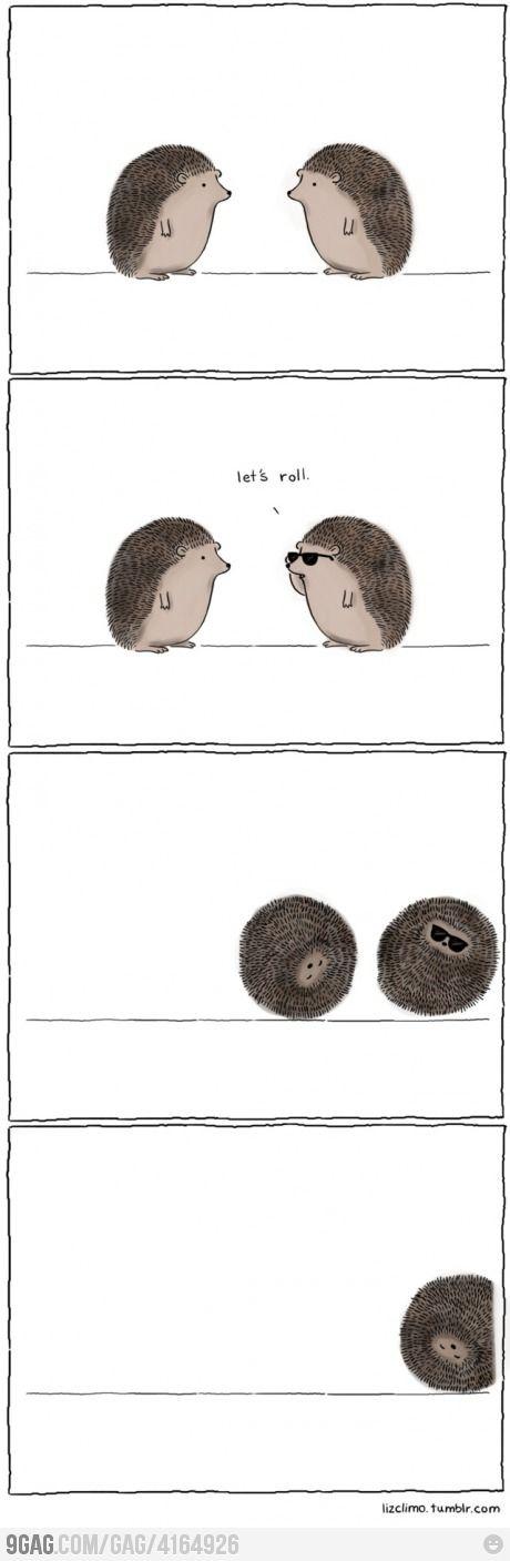 love hedgehogs. :)