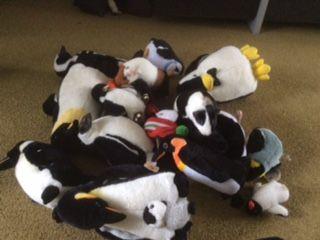 Pinguïn-doolhof