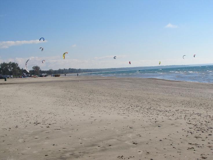 Kite surfers at Sauble Beach.