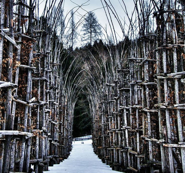 Italian artist Giuliano Mauri's epic Cattedrale Vegetale (or Tree Cathedral) is the perfect example of architecture that, instead of competing with or complementing nature, is quite literally a part of it.