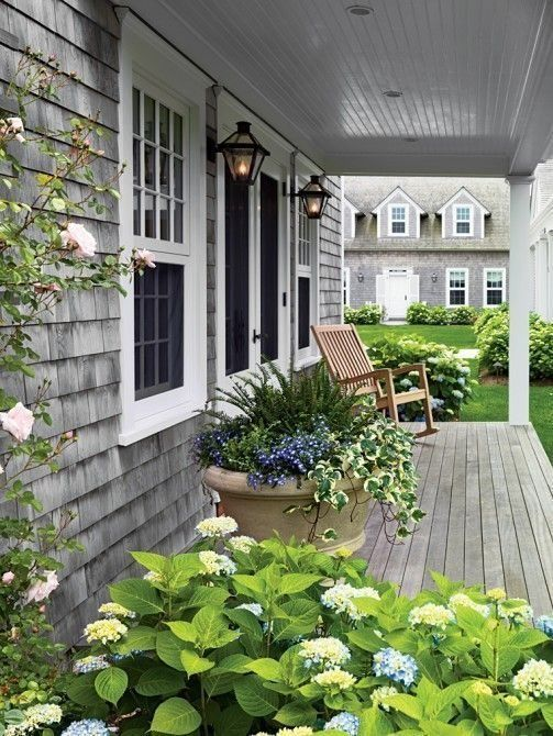 Lush patio with a gray shingled home exterior, teak deck and blue hydrangeas all around.