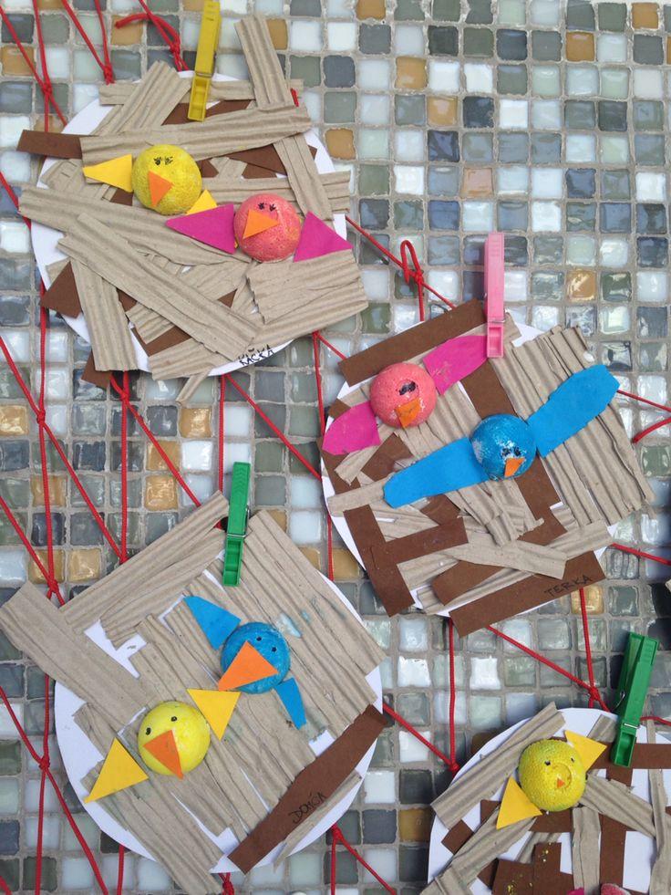Ptačí hnízda