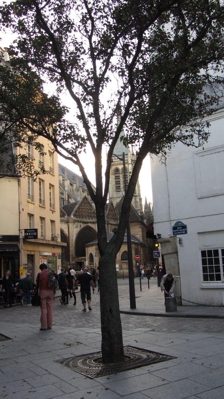 1000 images about paris on pinterest for Cash piscine sollies pont