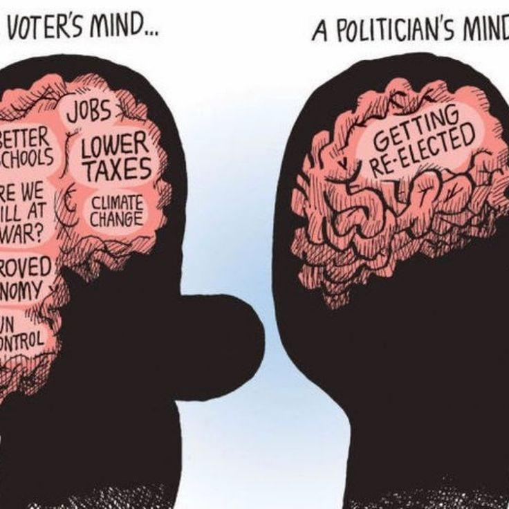 minds fact
