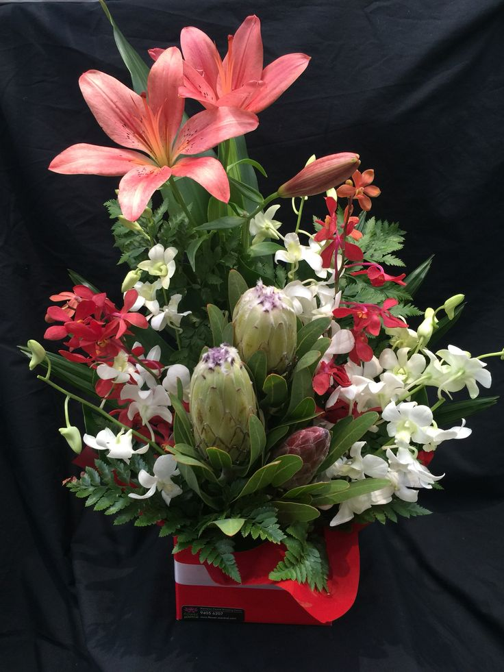 Protea, orchids & lily