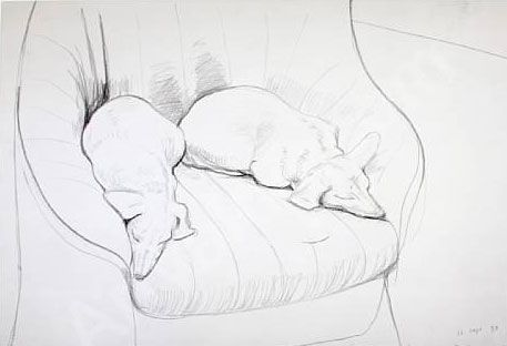 Two Dogs by David Hockney.  This is a classic line drawing. No use of shadows, or color. No filling in of negative space. It's all there.