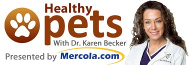 Mercola Healthy Pets/ this is about essential oils & dogs & controversial use around CATS- must read!