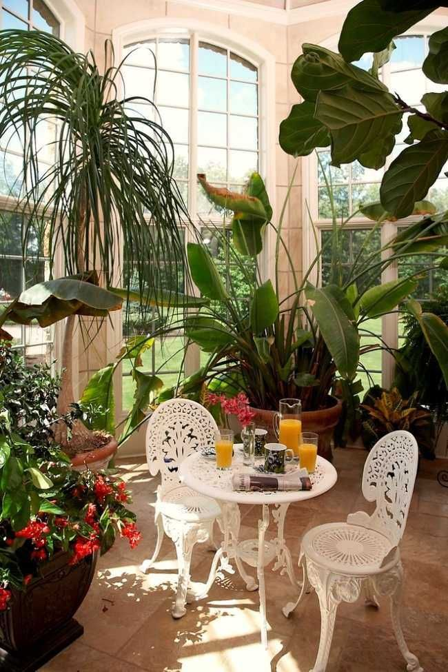 jardin d'hiver avec des plantes superbes table ronde et chaises