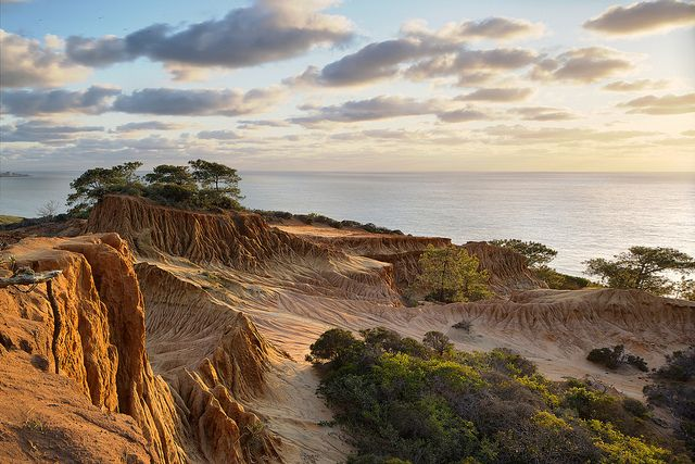 Six Spectacular Coastal Hikes in Southern California // Sundance Beach Blog // Torrey Pines State Reserve. Photo by Mike Vanessen.
