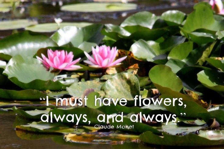 Monet quote