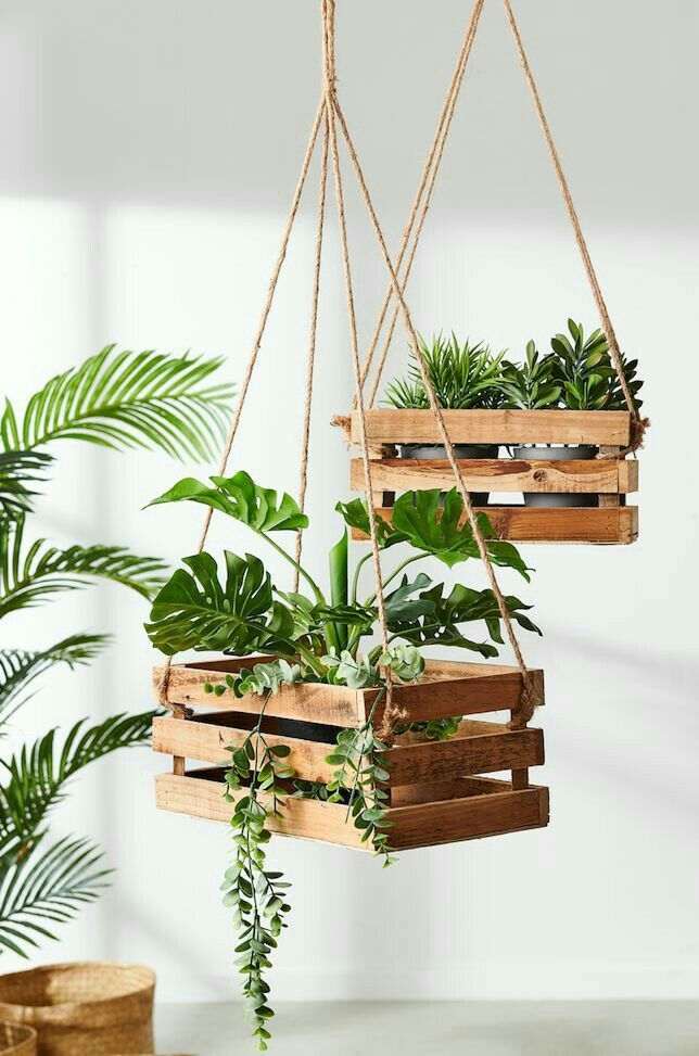 What about wooden hanging plants? Stay in touch with me for more ideas.