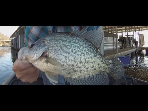 Winter Crappie Fishing For Slabs Part 2! Arkansas Crappie Fishing December 2016 – Fishin Fun
