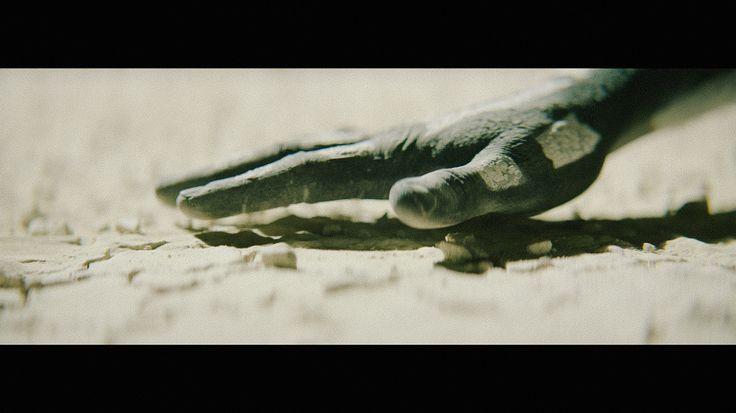 AUDI 'Rainmaker' - Ligthelm