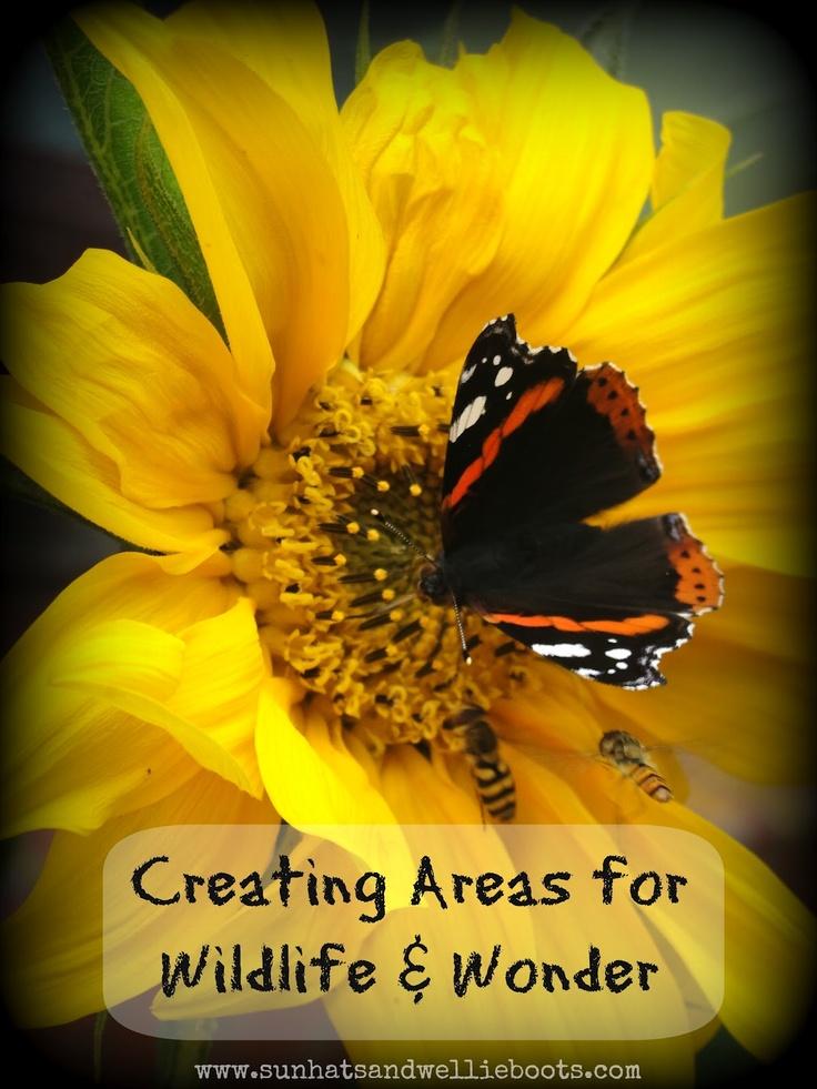 Creating Spaces for Wildlife & Wonder: Garden Ideas, Kids Nature Outdoor, Creating Spaces, Outdoor Play, Wildlife Gardening, Gardens Nature, Sun Hats, Wildlife Gardens