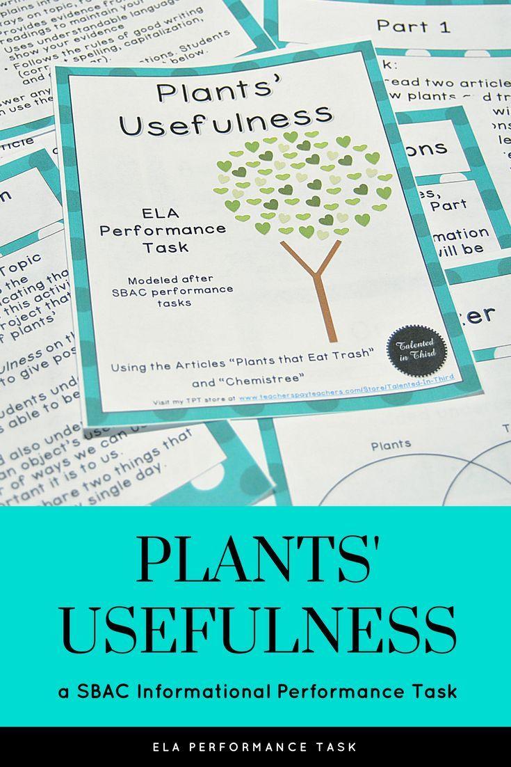 smarter balanced practice test 3rd grade pdf