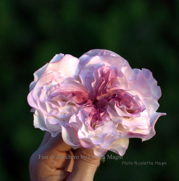 rosa di pasta di zucchero