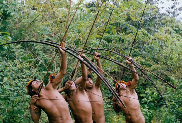 Awá usam seus arcos e flechas para caçar.