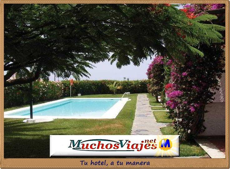 PLAYA DEL INGLÉS - rk-augustino-bungalows-playa-del-ingles-008