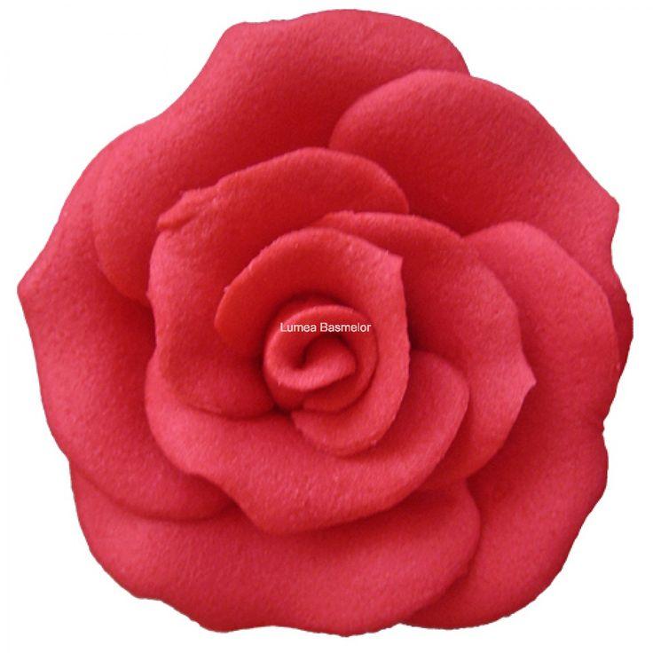 Trandafiri medii 30 buc rosu