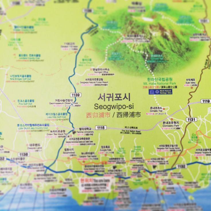 ソウルに住む食いしん坊の友人たちがお勧めする店のリストを握りしめ、空港から 600 番のバスに乗って一路南側の港町西帰浦(ソギポ)へ。1時間ほどで、 550 円くらいでした。空港は北側の海に面した済州市にあります。ソウルで使っている交通カードも使えました。バスは長距離乗っても安く、路線にもよりますが本数もあり便利です。ランチはインフォメーションの女性お勧めのトゥルチギのお店ヨンイシクタンに...