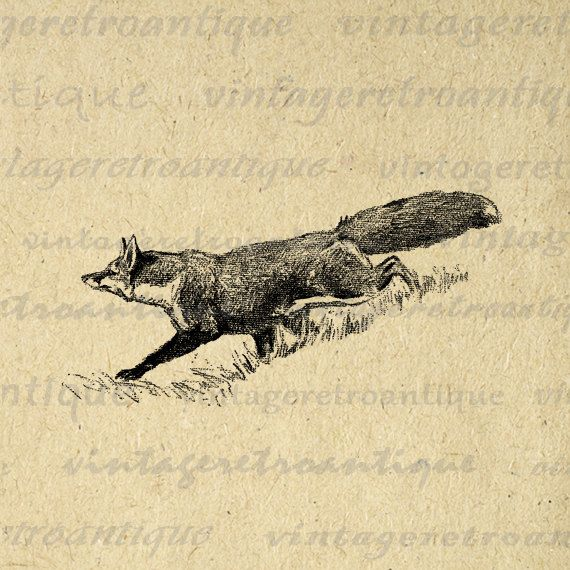 fox antique clip art | Fox Graphic Printable Digital Animal Image Download Illustration for ...