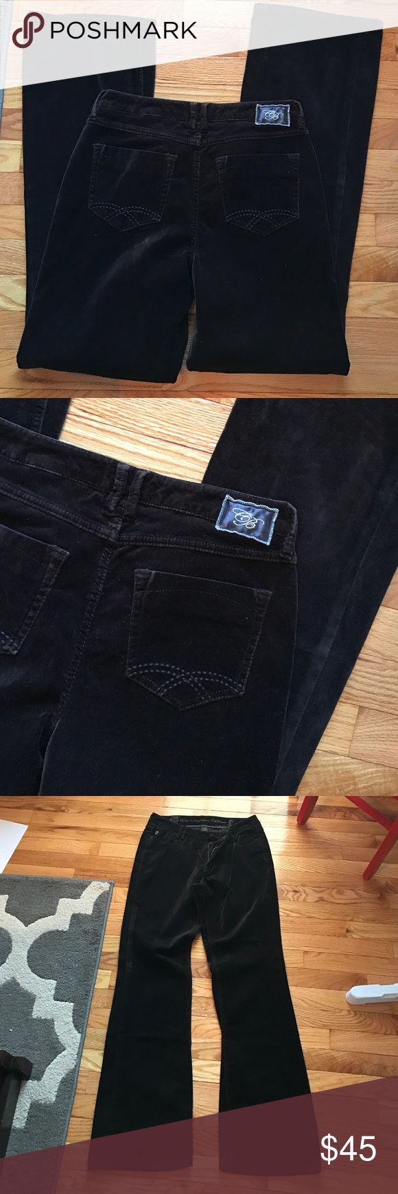 Christopher Blue dark brown velvet pants size 8 VGUC smoke free home. Cotton spandex blend Christopher Blue Pants Trousers