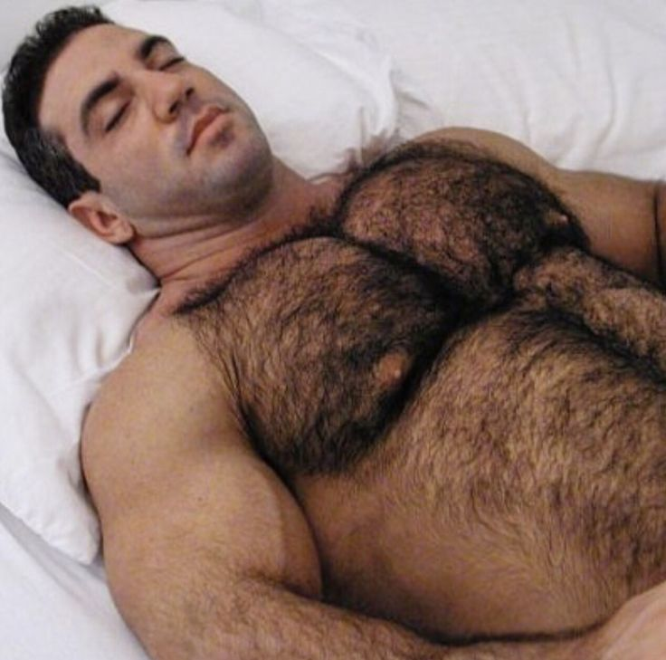 nude hairy bears