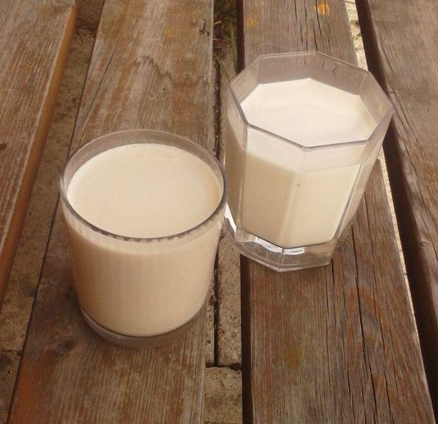 Konopné a oříškové mléko.