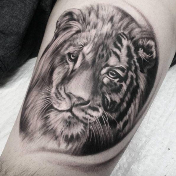 Animal Tattoo Designs Half Lion Half Tiger By Becky Slater
