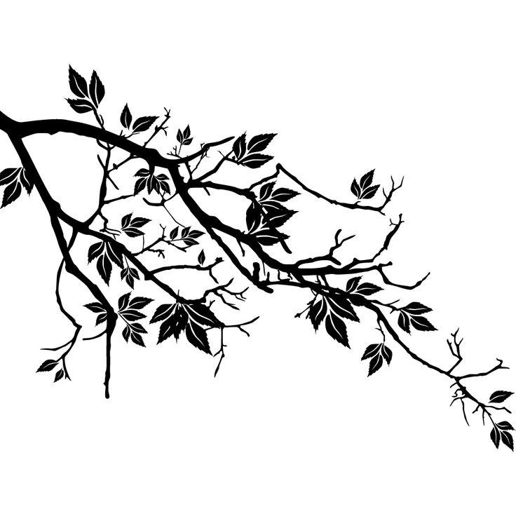 Vinilos folies : Vinilo decorativo rama