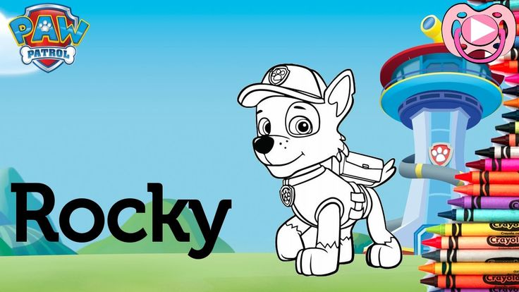 Characters from Paw Patrol 🐾  Coloring Rocky