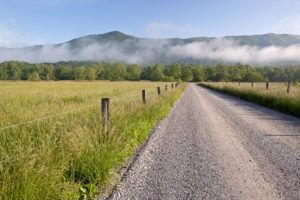 Summer in Cades Cove.